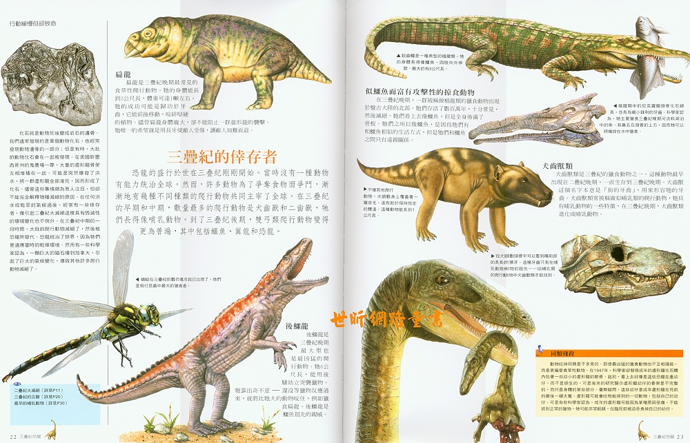 万年龟科技有限公�_三叠纪海妖复原图_的三叠纪晚期开始,二叠纪-三叠纪灭绝事件